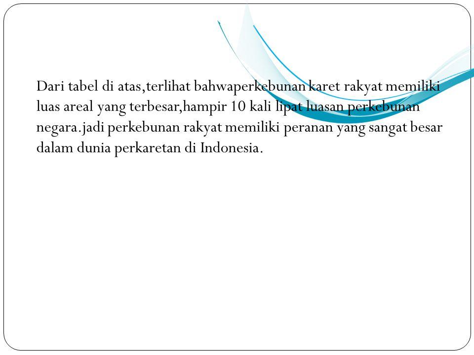 Dari tabel di atas,terlihat bahwaperkebunan karet rakyat memiliki luas areal yang terbesar,hampir 10 kali lipat luasan perkebunan negara.jadi perkebunan rakyat memiliki peranan yang sangat besar dalam dunia perkaretan di Indonesia.