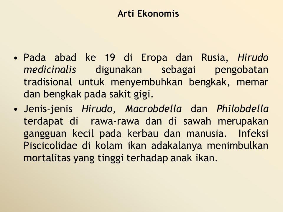 Arti Ekonomis