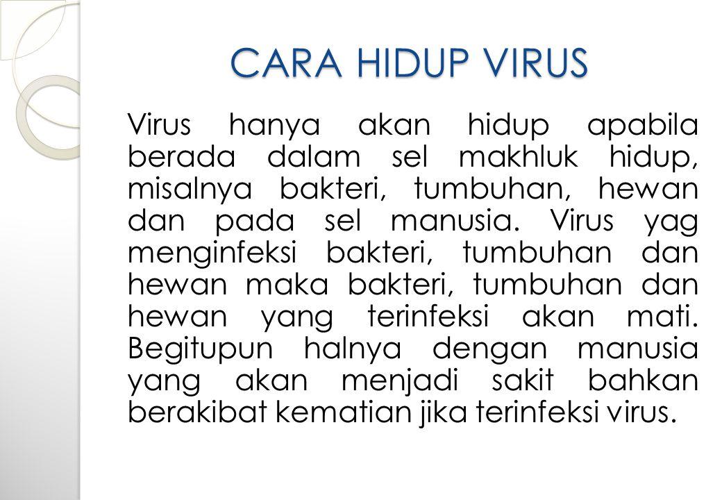 CARA HIDUP VIRUS