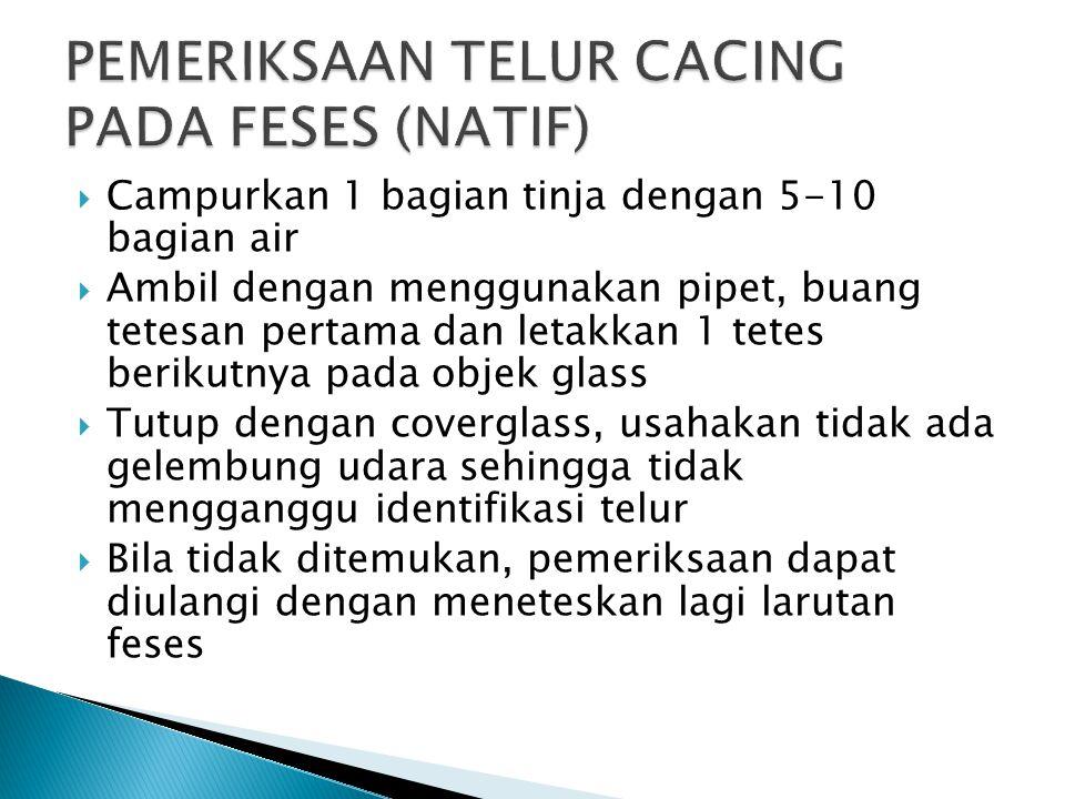 PEMERIKSAAN TELUR CACING PADA FESES (NATIF)