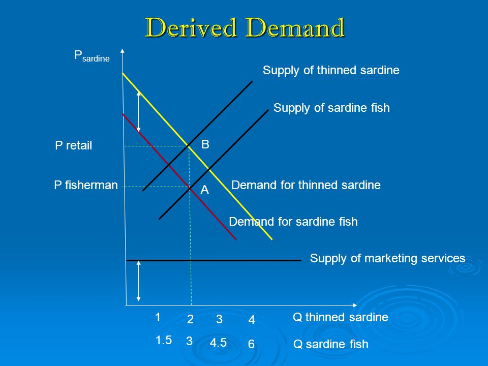 Derived Demand Psardine Supply of thinned sardine