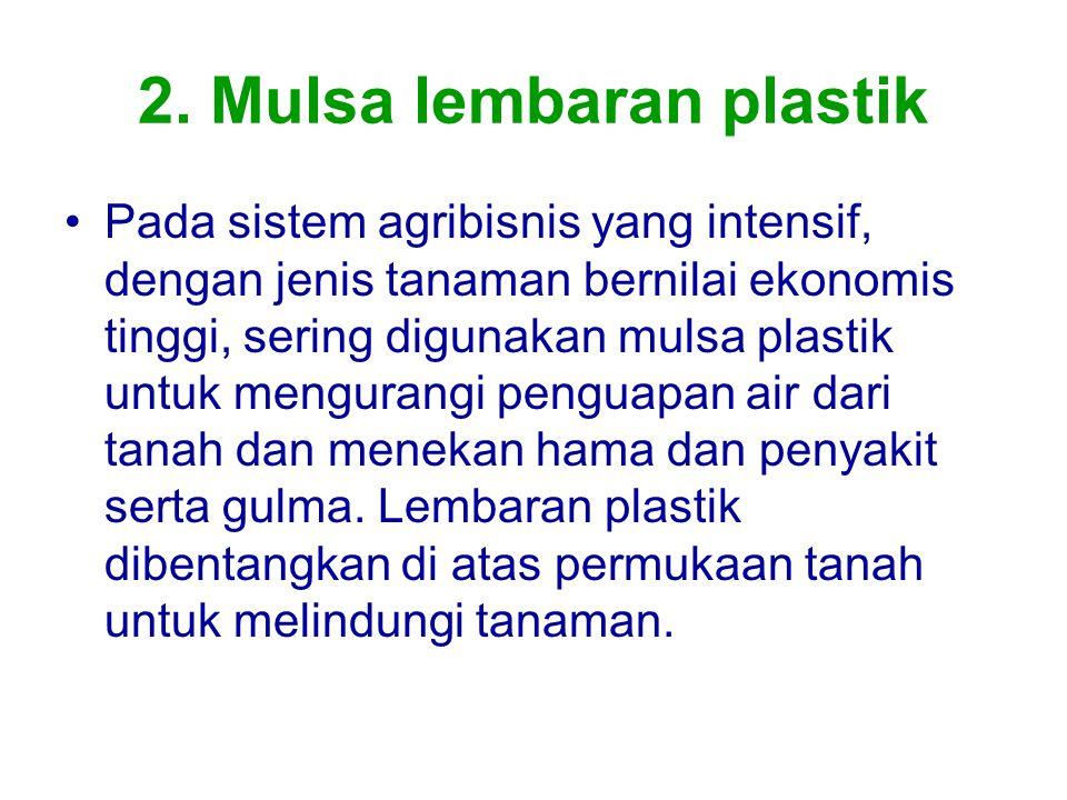 2. Mulsa lembaran plastik