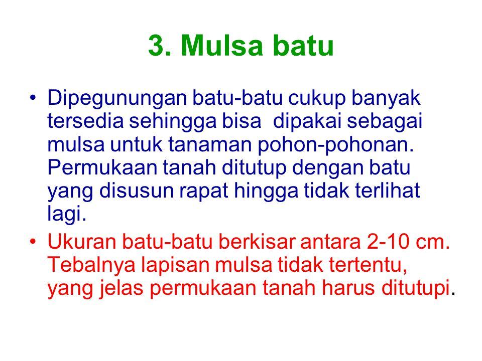 3. Mulsa batu
