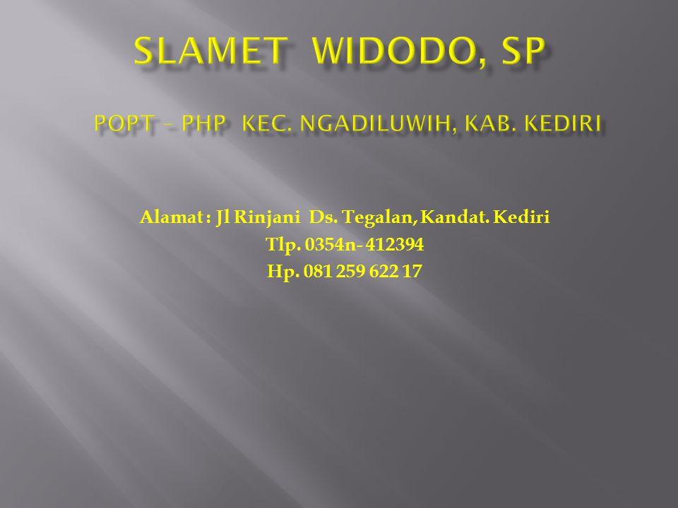 SLAMET WIDODO, SP POPT – PHP Kec. Ngadiluwih, Kab. Kediri