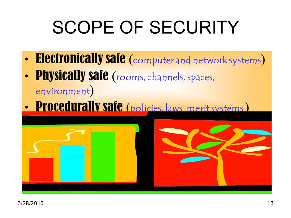 SCOPE OF SECURITY Electronically safe (computer and network systems)