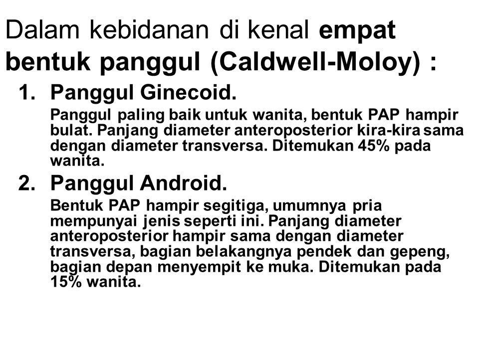 Dalam kebidanan di kenal empat bentuk panggul (Caldwell-Moloy) :