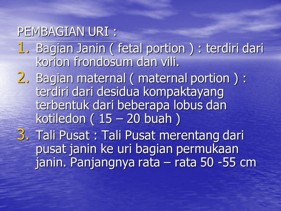 PEMBAGIAN URI : Bagian Janin ( fetal portion ) : terdiri dari korion frondosum dan vili.