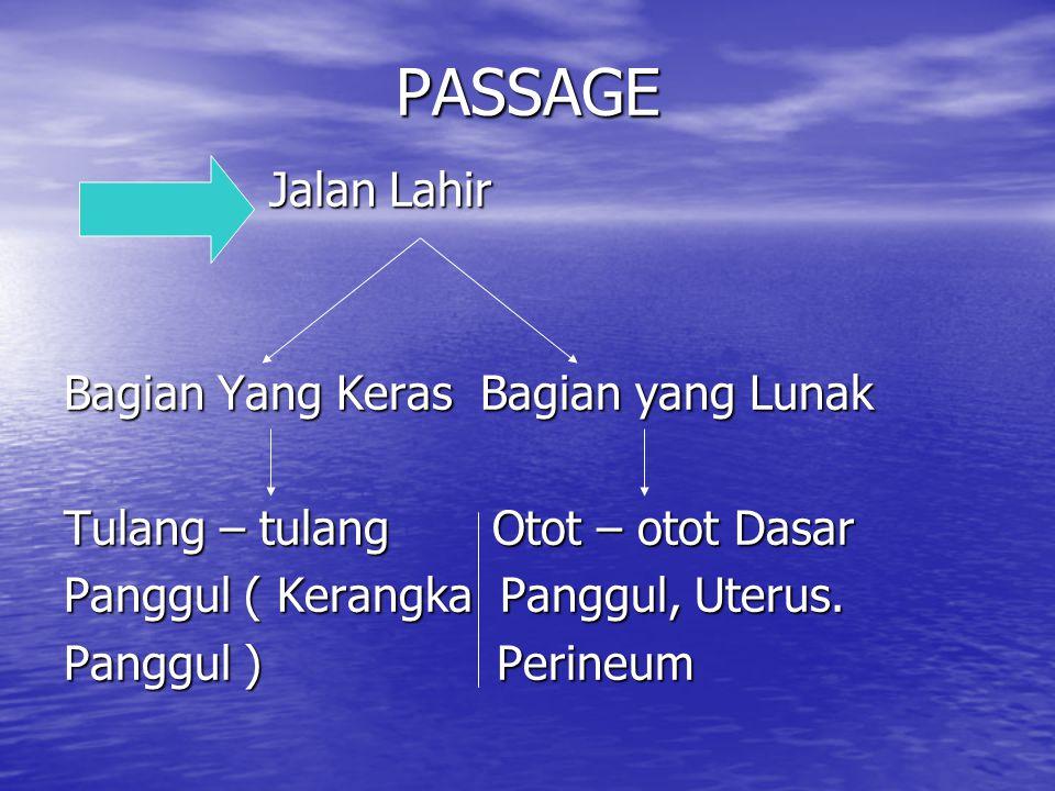 PASSAGE Jalan Lahir Bagian Yang Keras Bagian yang Lunak