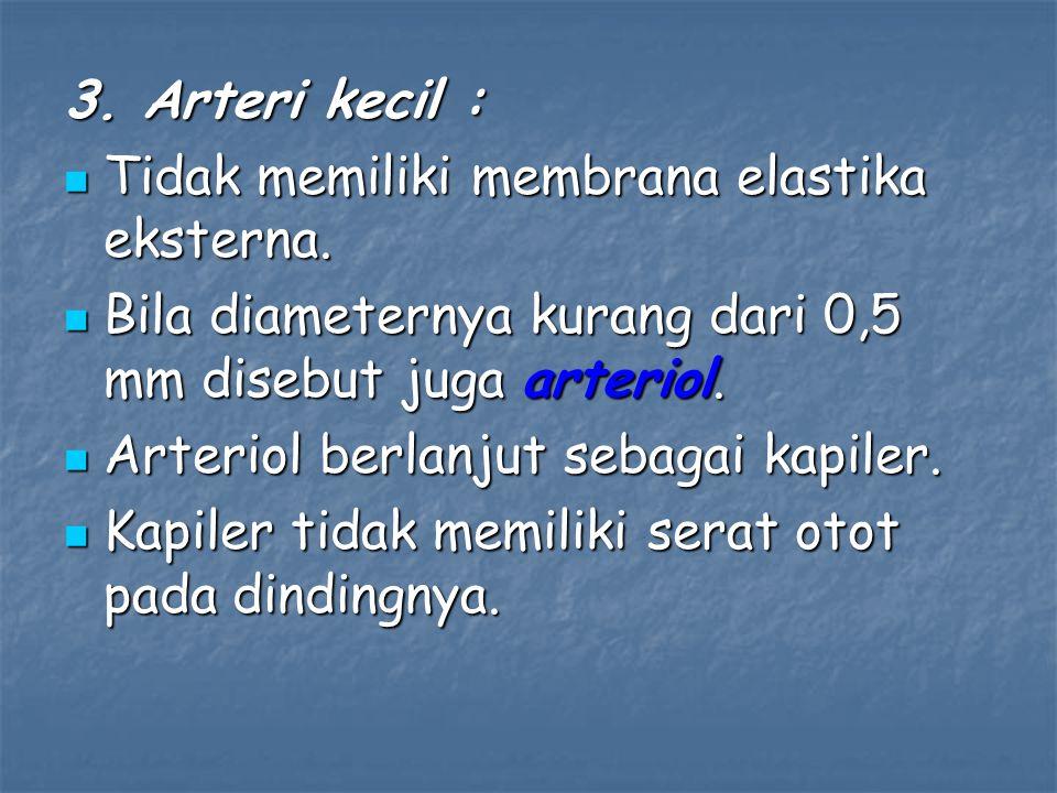 3. Arteri kecil : Tidak memiliki membrana elastika eksterna. Bila diameternya kurang dari 0,5 mm disebut juga arteriol.