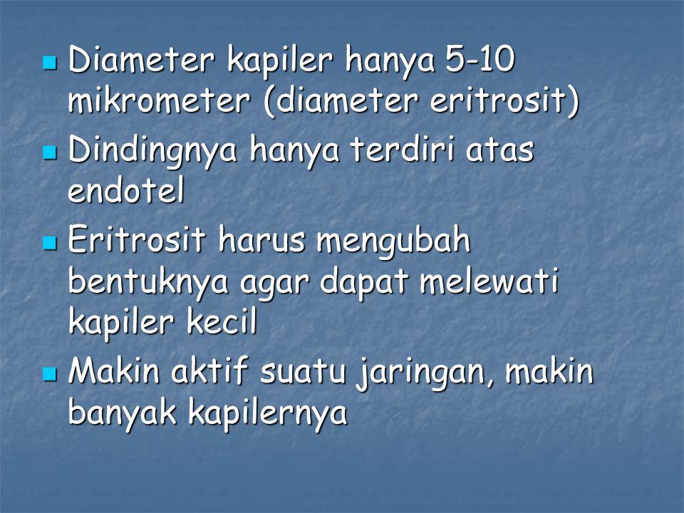 Diameter kapiler hanya 5-10 mikrometer (diameter eritrosit)