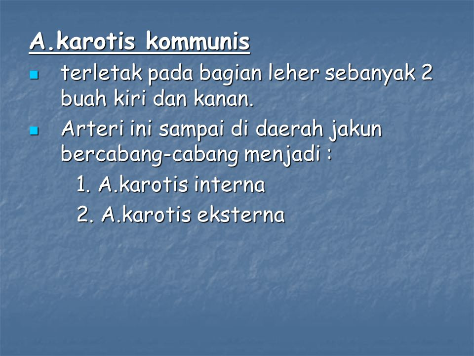 A.karotis kommunis terletak pada bagian leher sebanyak 2 buah kiri dan kanan. Arteri ini sampai di daerah jakun bercabang-cabang menjadi :