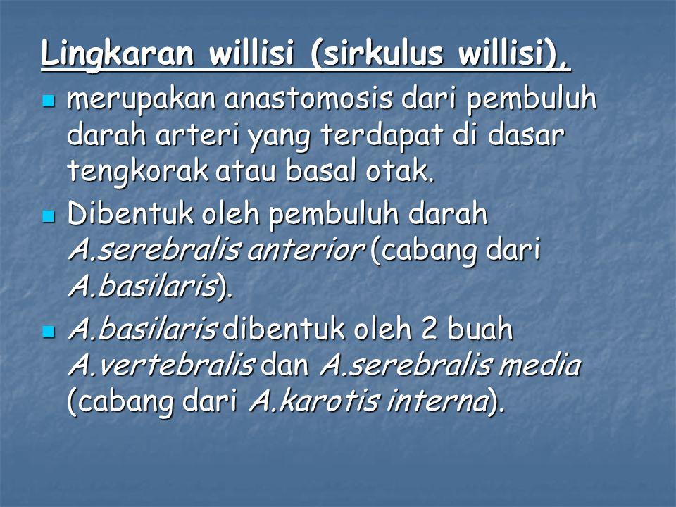 Lingkaran willisi (sirkulus willisi),