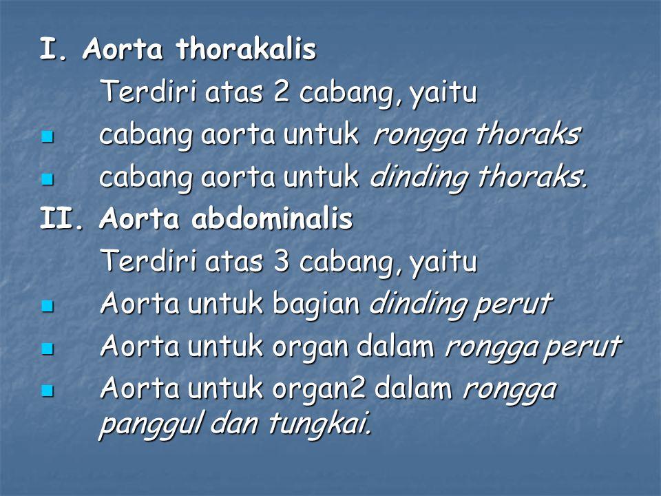 I. Aorta thorakalis Terdiri atas 2 cabang, yaitu. cabang aorta untuk rongga thoraks. cabang aorta untuk dinding thoraks.