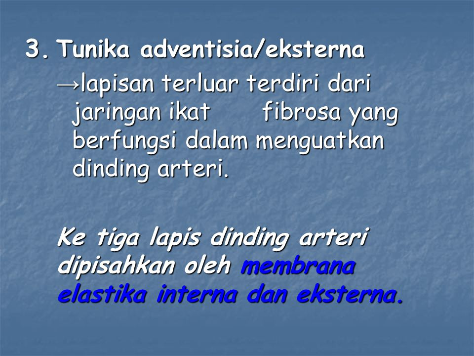 Tunika adventisia/eksterna