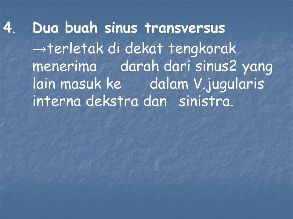 4. Dua buah sinus transversus