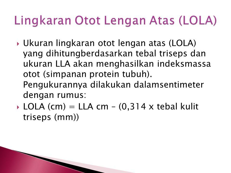 Lingkaran Otot Lengan Atas (LOLA)