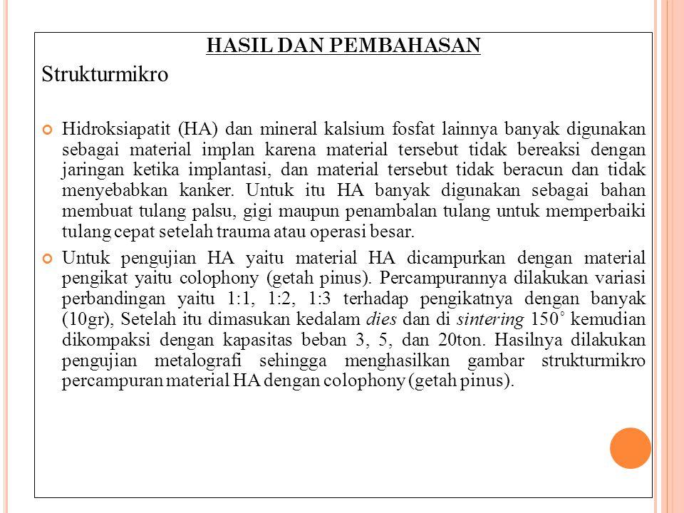 Strukturmikro HASIL DAN PEMBAHASAN