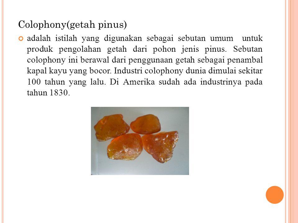 Colophony(getah pinus)