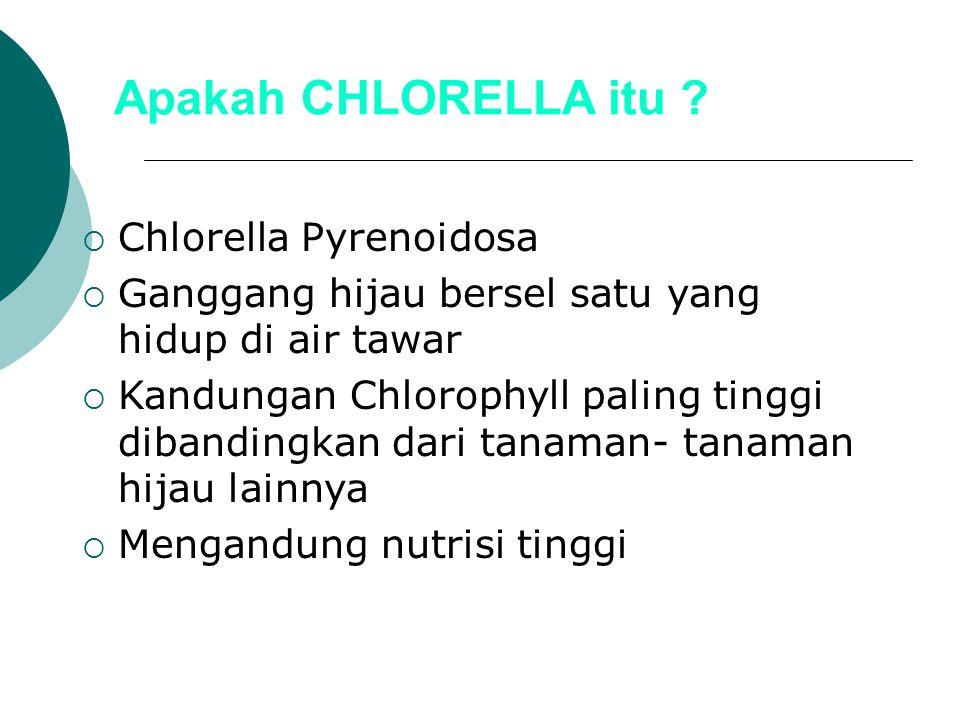 Apakah CHLORELLA itu Chlorella Pyrenoidosa