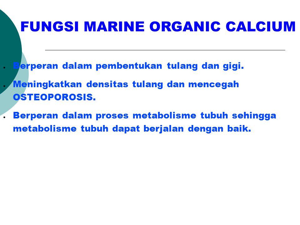 FUNGSI MARINE ORGANIC CALCIUM