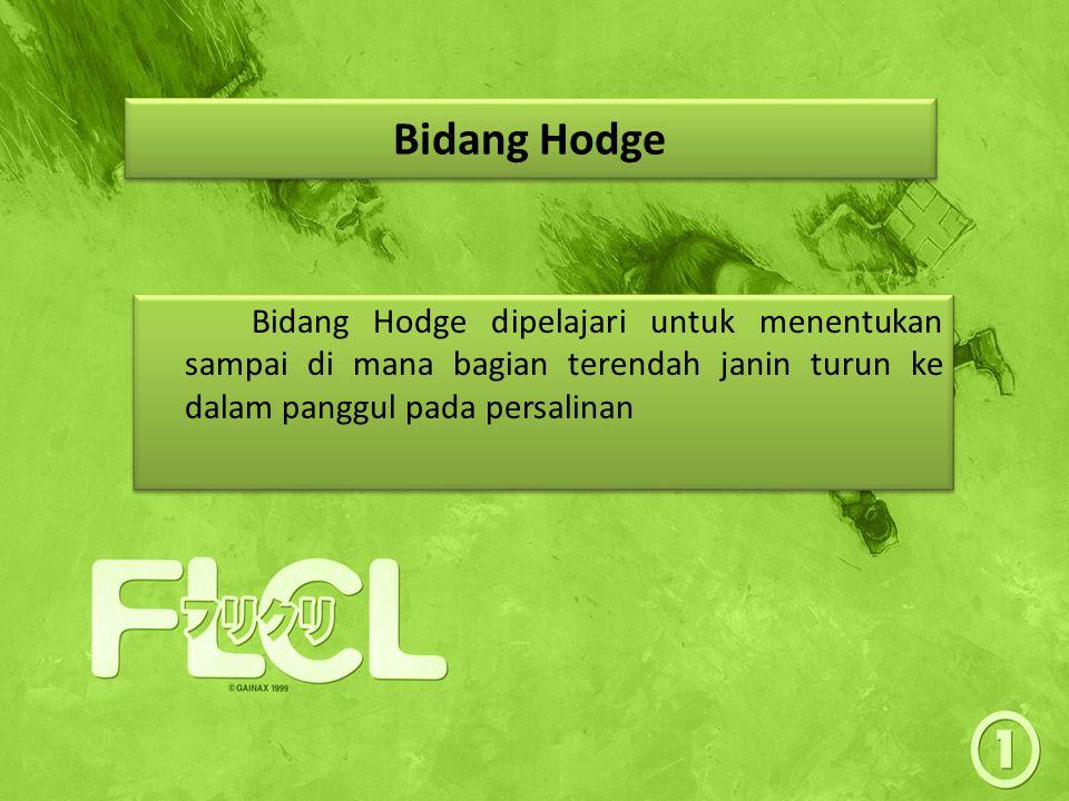Bidang Hodge Bidang Hodge dipelajari untuk menentukan sampai di mana bagian terendah janin turun ke dalam panggul pada persalinan.