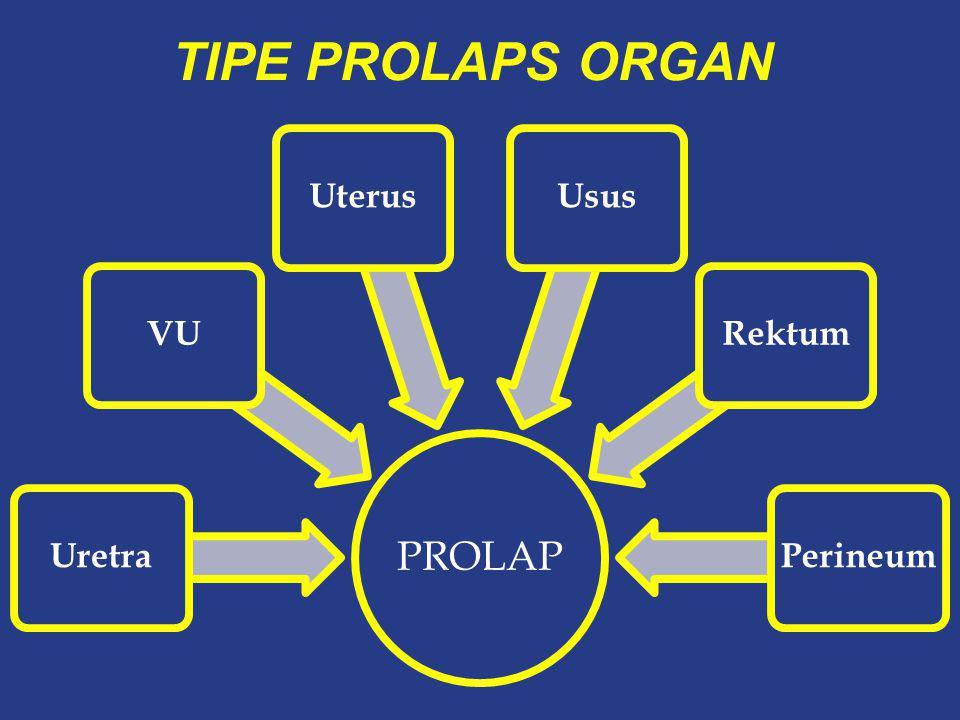 TIPE PROLAPS ORGAN PROLAP Uretra VU Uterus Usus Rektum Perineum