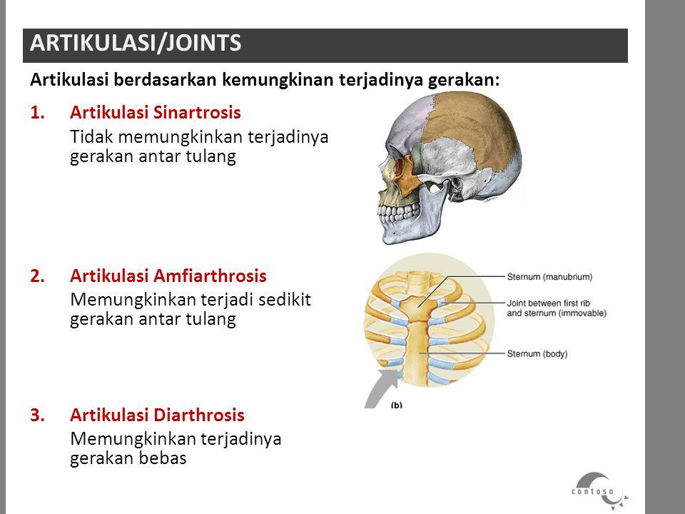 ARTIKULASI/JOINTS Artikulasi berdasarkan kemungkinan terjadinya gerakan: Artikulasi Sinartrosis.
