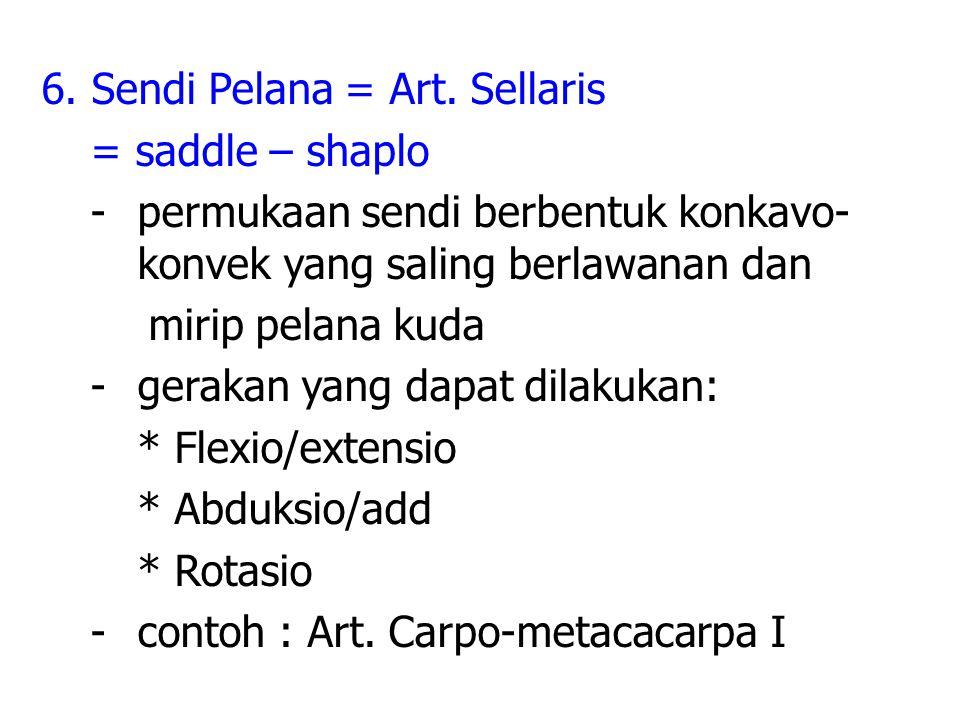 6. Sendi Pelana = Art.