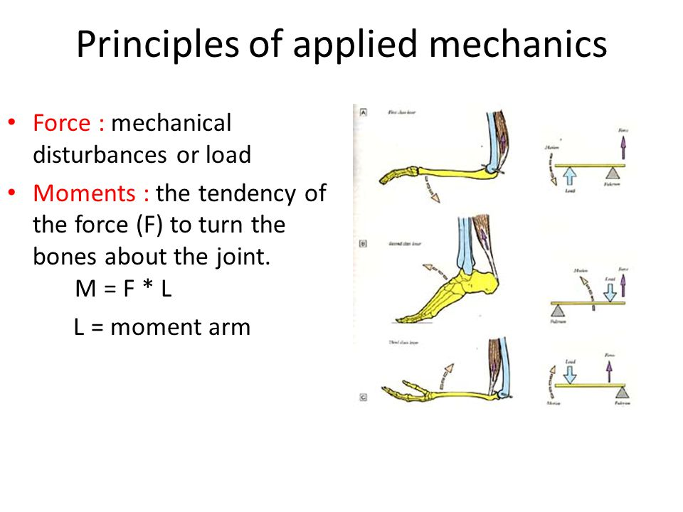 Principles of applied mechanics