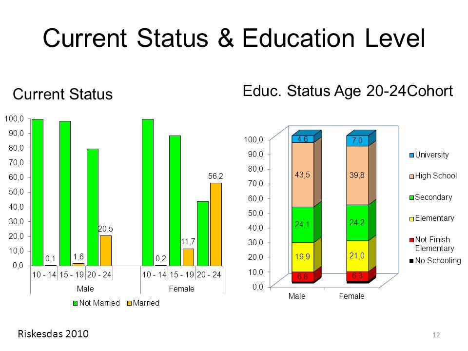 Current Status & Education Level