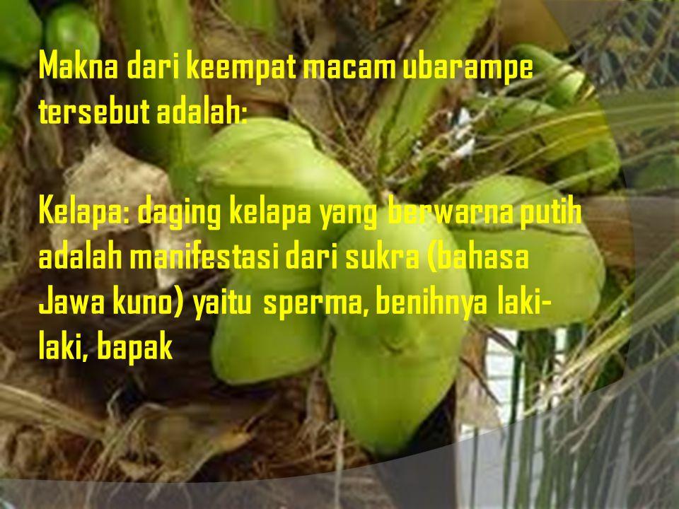 Makna dari keempat macam ubarampe tersebut adalah: Kelapa: daging kelapa yang berwarna putih adalah manifestasi dari sukra (bahasa Jawa kuno) yaitu sperma, benihnya laki-laki, bapak