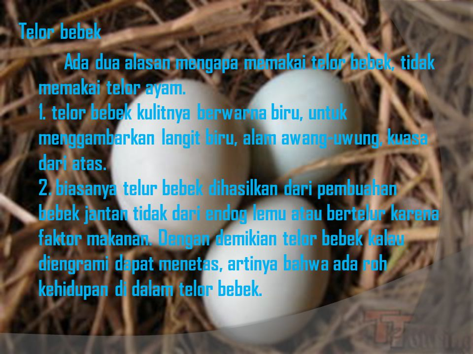 Telor bebek Ada dua alasan mengapa memakai telor bebek, tidak memakai telor ayam.