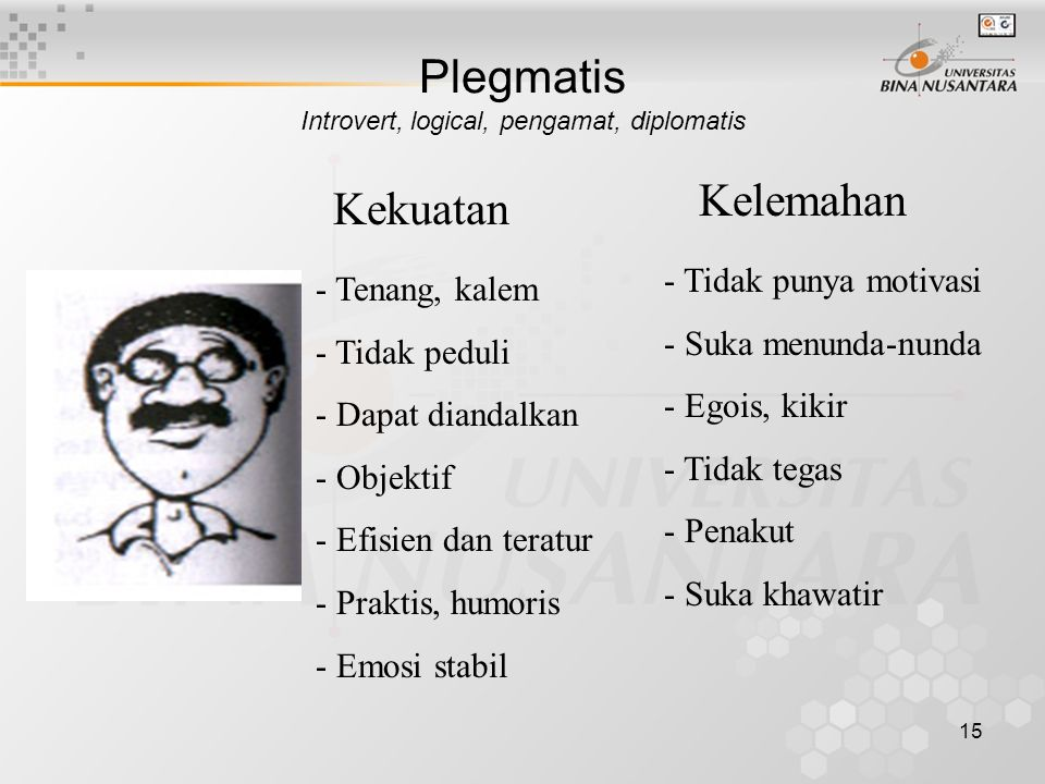 Plegmatis Introvert, logical, pengamat, diplomatis
