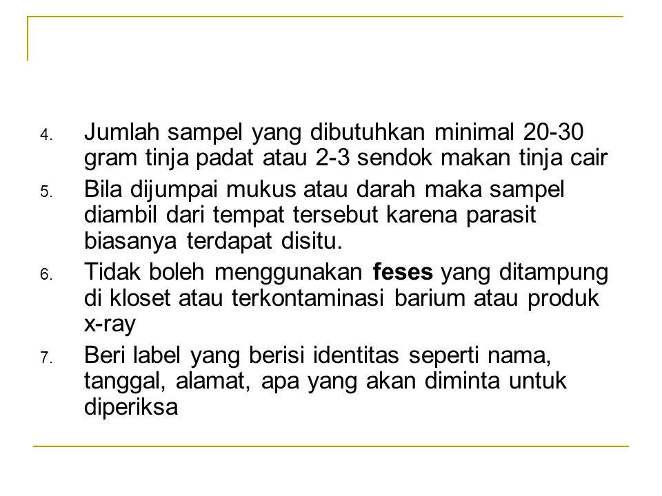 Jumlah sampel yang dibutuhkan minimal 20-30 gram tinja padat atau 2-3 sendok makan tinja cair