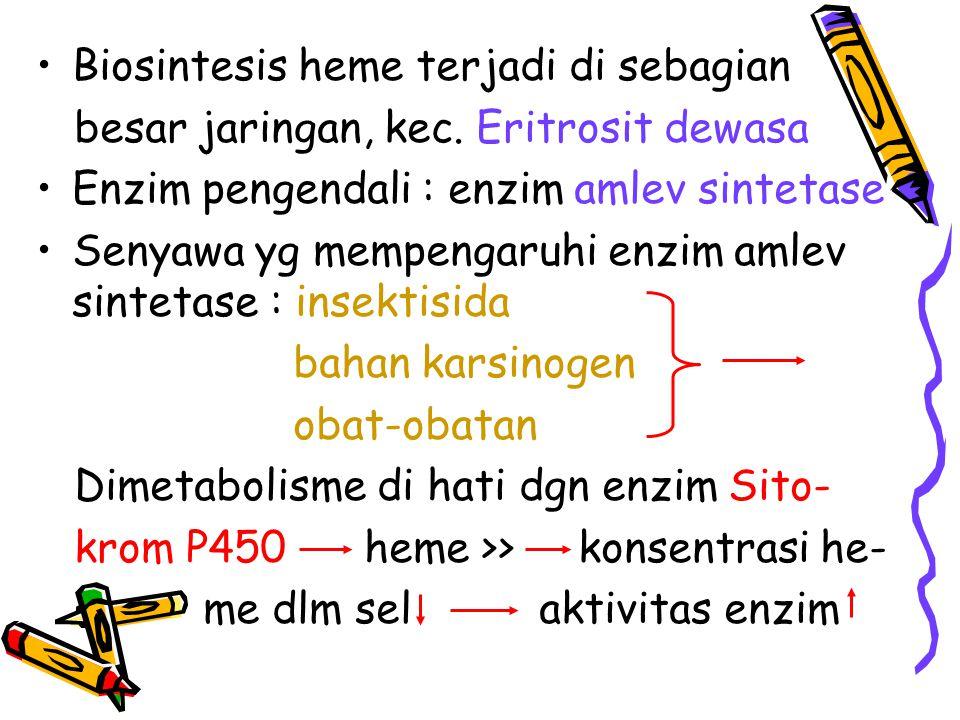 Biosintesis heme terjadi di sebagian