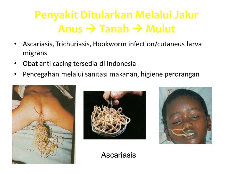 Penyakit Ditularkan Melalui Jalur Anus  Tanah  Mulut