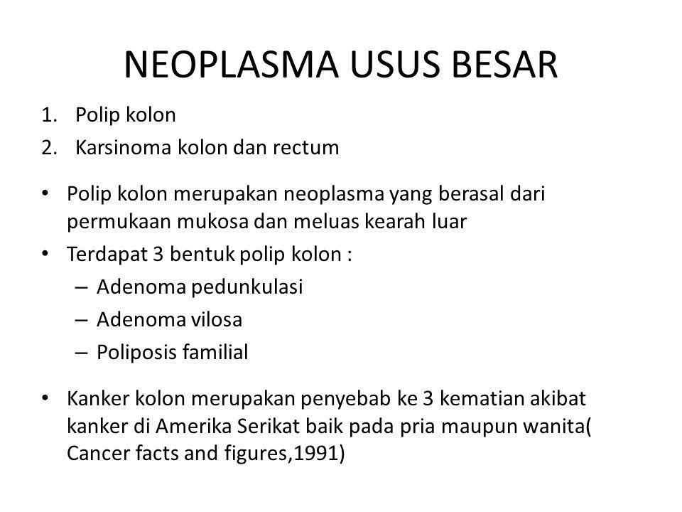 NEOPLASMA USUS BESAR Polip kolon Karsinoma kolon dan rectum