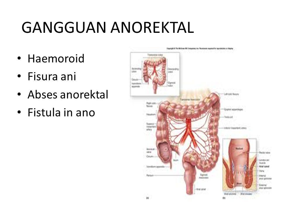 GANGGUAN ANOREKTAL Haemoroid Fisura ani Abses anorektal Fistula in ano