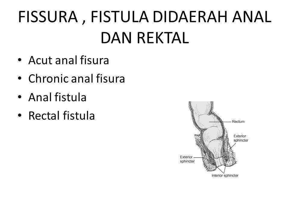 FISSURA , FISTULA DIDAERAH ANAL DAN REKTAL