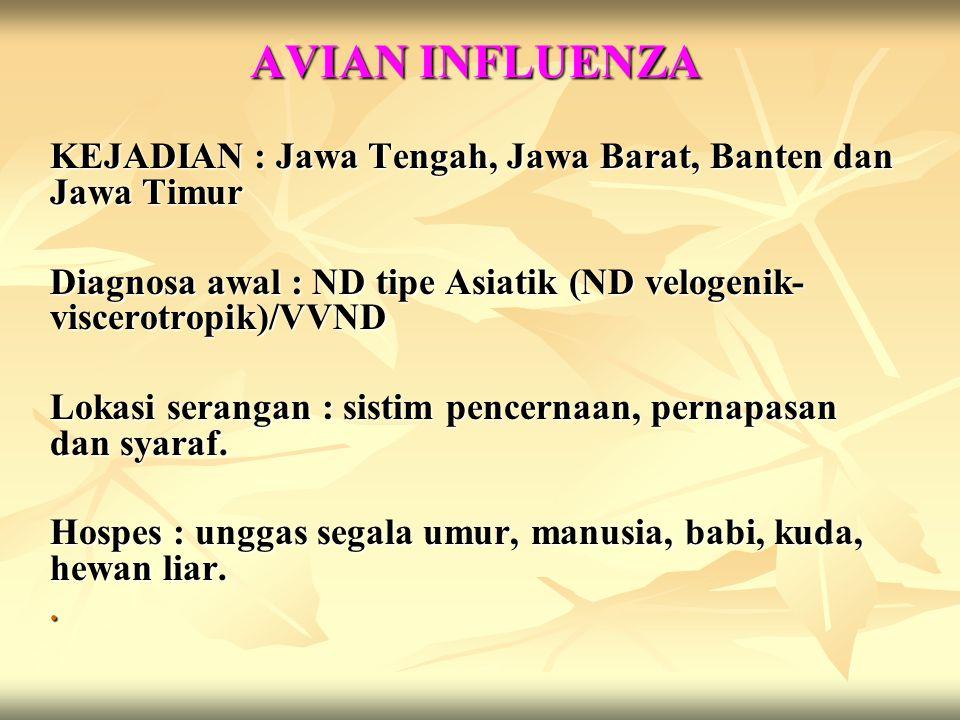 AVIAN INFLUENZA KEJADIAN : Jawa Tengah, Jawa Barat, Banten dan Jawa Timur. Diagnosa awal : ND tipe Asiatik (ND velogenik-viscerotropik)/VVND.