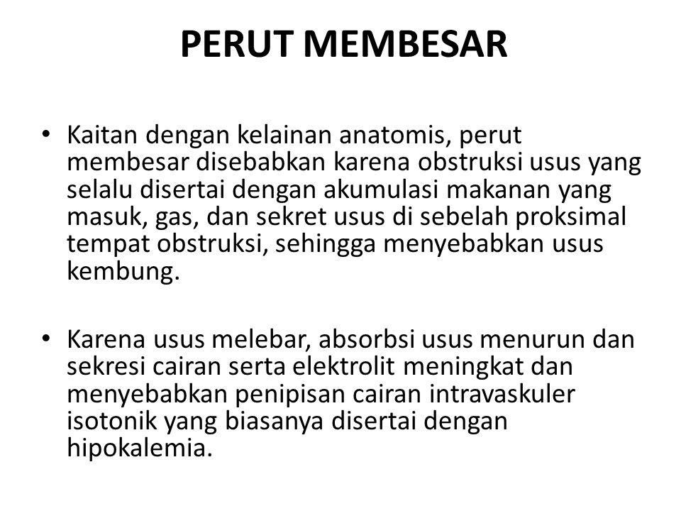 PERUT MEMBESAR