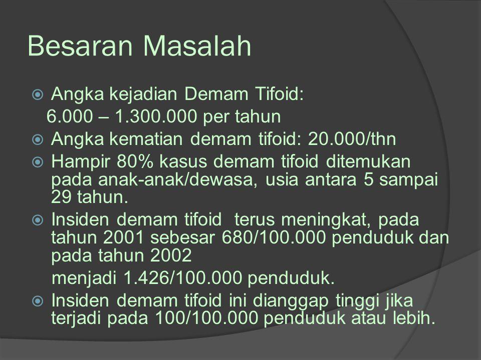Besaran Masalah Angka kejadian Demam Tifoid:
