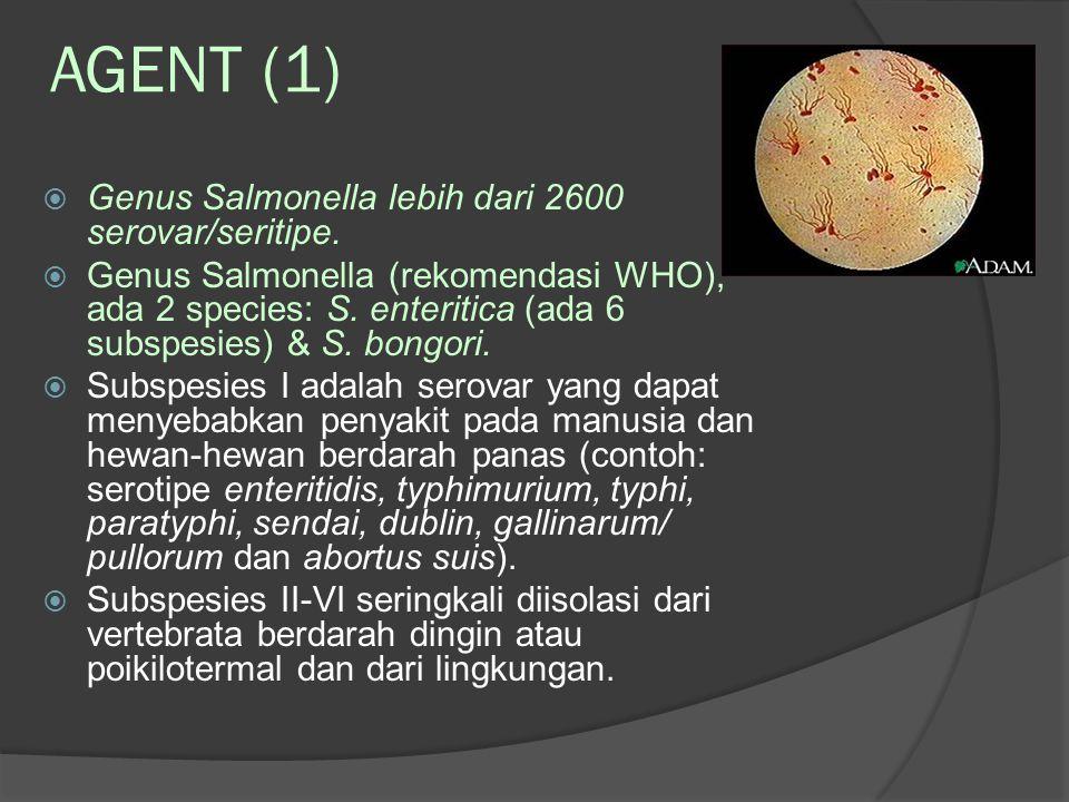 AGENT (1) Genus Salmonella lebih dari 2600 serovar/seritipe.