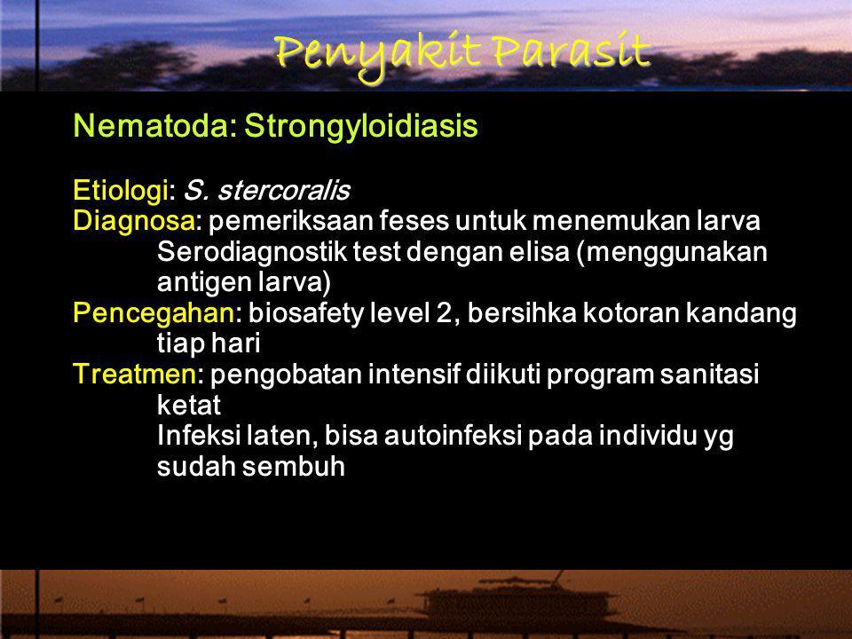 Penyakit Parasit Nematoda: Strongyloidiasis Etiologi: S. stercoralis