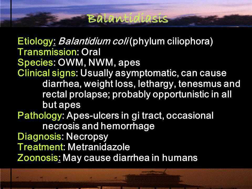 Balantidiasis Etiology: Balantidium coli (phylum ciliophora)