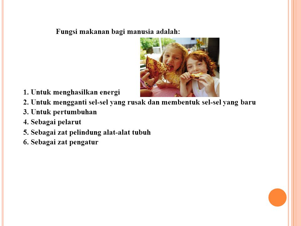 Fungsi makanan bagi manusia adalah:
