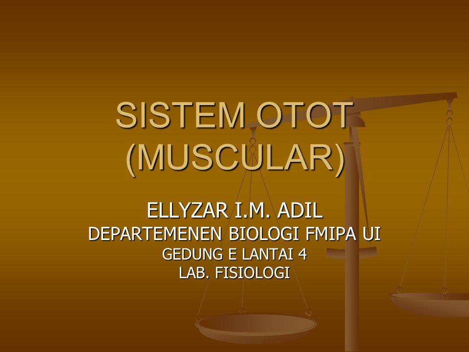 SISTEM OTOT (MUSCULAR)