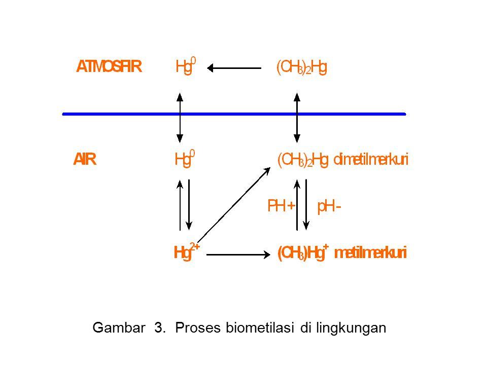 Gambar 3. Proses biometilasi di lingkungan