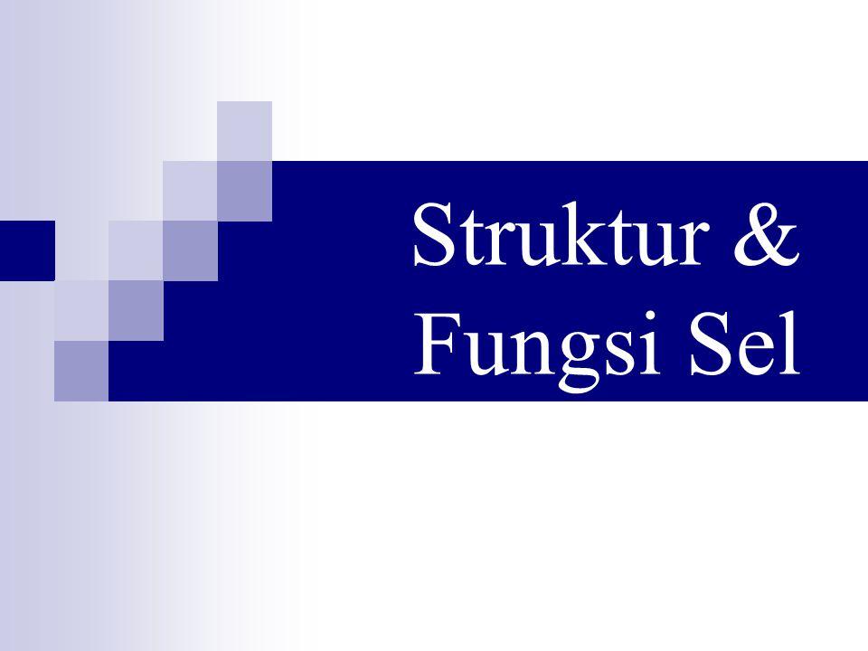 Struktur & Fungsi Sel
