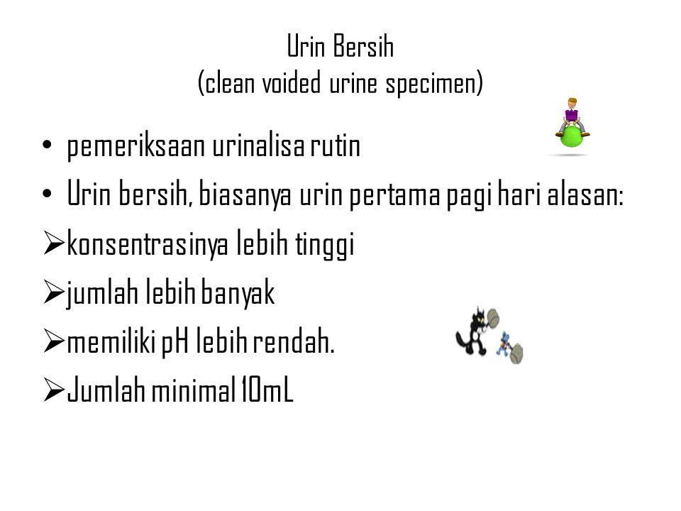 Urin Bersih (clean voided urine specimen)